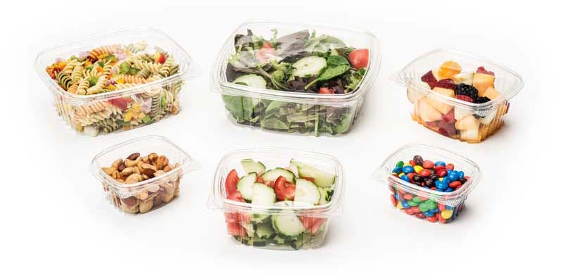 Clear Hinged Plastic Container