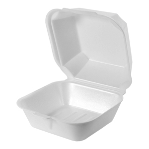 22500 - Large Sandwich Foam Hinged Container